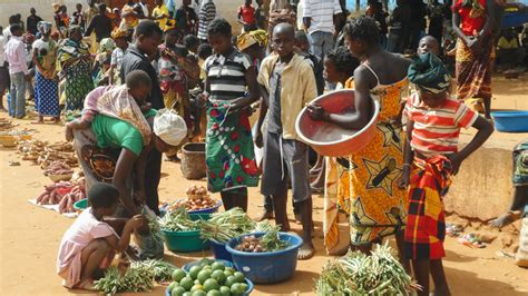 Mozambique Case Study Shows That Poverty Is about Much