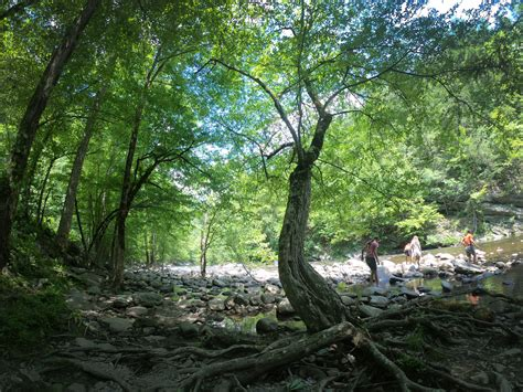 Great Smoky Mountains National Park: Cades Cove Campground