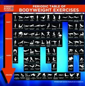 Weight Lifting or Calisthenics   SiOWfa15: Science in Our