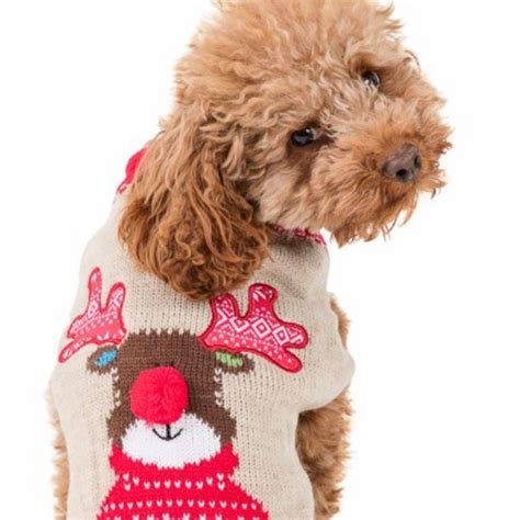 Aldi Matching Jumpers: Christmas Jumpers For Dogs Is
