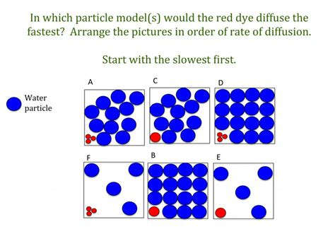 Diffusion teaching resources | the science teacher
