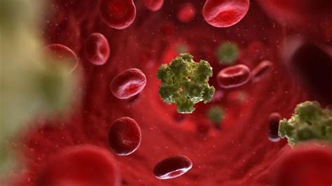 What Are the Symptoms of the HPV Virus in Women