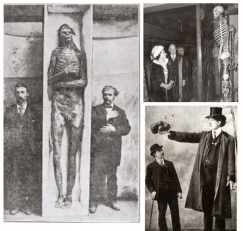 The Great Smithsonian Cover-Up: 18 Giant Skeletons
