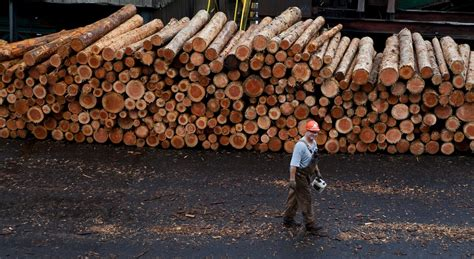 Stimson Lumber Announces It's Pulling Timber Jobs Out of